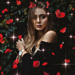 rosepetals rose sparkles person freetoedit