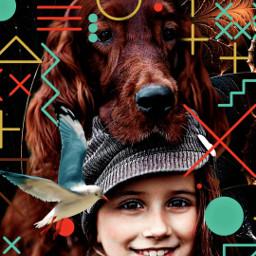 dog freetoedit srcgeometricshapes geometricshapes