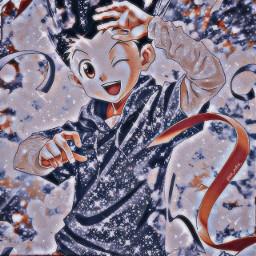 anime hunterxhunter hxh gon freecss gonfreecss freecssgon freetoedit