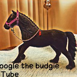 schleichhorses diy horses schleich googlethebudgie