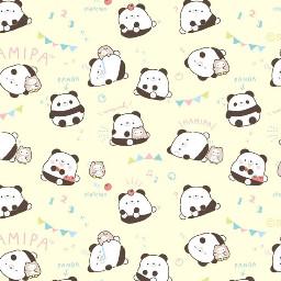 hamipa panda pastelyellow cute kawaii party backround wallpaper adorable cutie animals cake sweets fun exciting yellowaesthetic chibi pandas