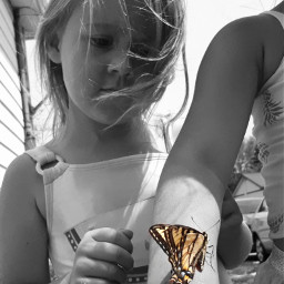 colorsplash butterfly girl curious beautiful nature freetoedit myfavoriteshot