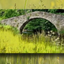 bridge freetoedit