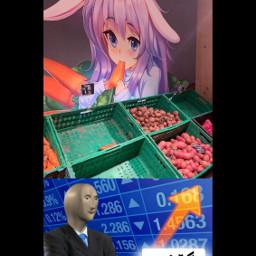 anime animekawaii