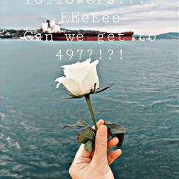 omg tysm cantbelieveit follow 497 flower water boat beautiful freetoedit