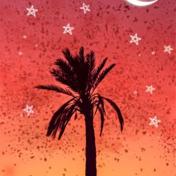 freetoedit gradient night sky moon stars palmtree