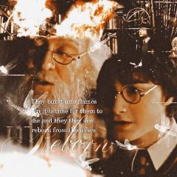 uhm harrypotter harrypotteraesthetic harrypotterblendedit blendedit dumbledore fawkes pheonix red freetoedit
