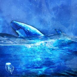 blue ocean sea sealife fantasy whale fish water bubbles night beach freetoedit