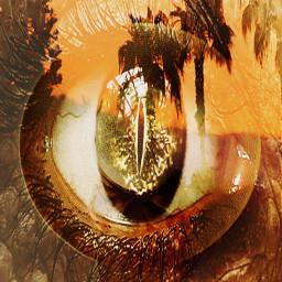 followmeoninstagram lydiacline ind_edits_ highoctaneartistry ircdesignthesunhat designthesunhat