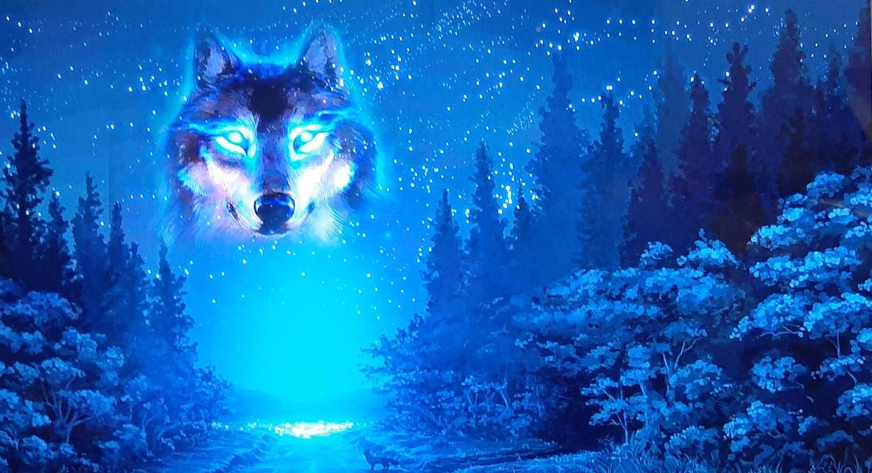 #wolf #night #blue