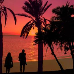 silhoutte couple sunsetbeach sunsetbackground freetoedit unsplash ircthesunsetpalm thesunsetpalm