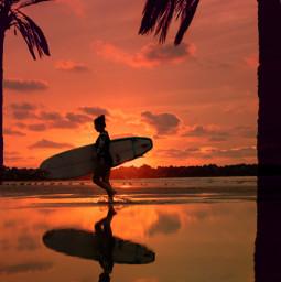 surfer sunsetbeach unsplash ircthesunsetpalm thesunsetpalm