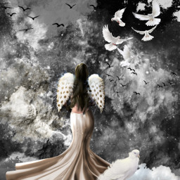 freetoedit angel doves clouds