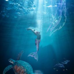 ircunderwaterbeauty underwaterbeauty freetoedit