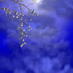 قمر ازرق خلفيه خلفية خلفيات الفجر ليل moon غيوم freetoedit