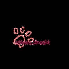 watermark @bbokaris_cheesestick freetoedit watermark