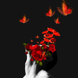 background sample unreal surreal surrealism mask boy red butterfly redbutterly flowers roses freetoedit