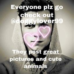 follow dogs animals freetoedit