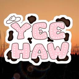 freetoedit yeehaw country countrygirl yeehawww
