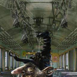 desafio challenge tremvazio bruxo mago duende bats morcegos teiasdearanha teias freetoedit ircemptytrain emptytrain