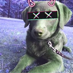 freetoedit swag redo epic dog cute xxx demon horn x xmas naruto remix hot tags roblox ear doc port gatcha anime