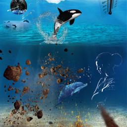 freetoedit climatechange globalwarming ocean