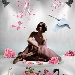freetoedit ballerina swans roses