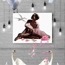 freetoedit ballerina dancer swans pond