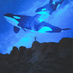 remixit killerwhales mountain mountains nightsky sky night stars whales whale freetoedit