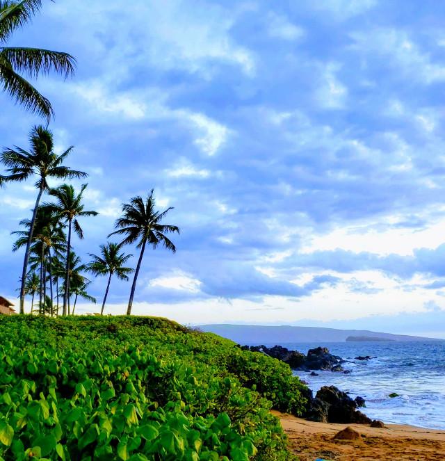 Maui.......#memories #bluehour #pacificocean #travel #view #vacation #plamtrees #tropical #summervibes #water #green #lush #beach #beautiful #myoriginalphoto #maui #hawaii