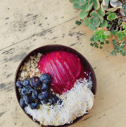 acaibowl succulents topdown foodphotography breakfast smoothiebowl freetoedit freeforbusiness