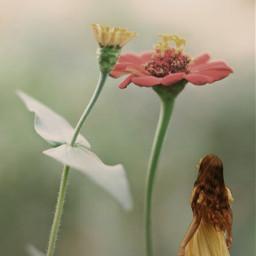 freetoedit flower floral fantasy