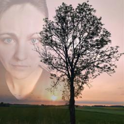 fotos art viral olesya_haiduk mobilephotography tree sunset sunshine sun sunny field summer summertime poland polska polskaprzyroda pole słońce zachodsłońca drzewo komorka zdjęcia fotkitop obserwuj freetoedit