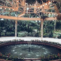 conservatory nature plants garden