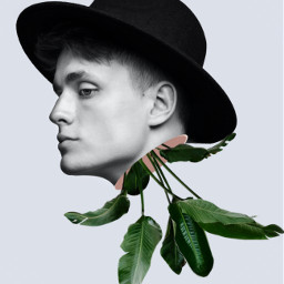 freetoedit myedit surreal boy leaves madewithpicsart araceliss creative men man portrait