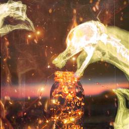 freetoedit radiology dogskull canine hands oshahatesme fire warmlight ircthemagicjar themagicjar