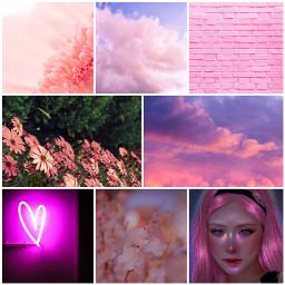 imtootiredtohashtag ccpinkaesthetic2021 pinkaesthetic2021