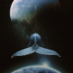 background ftestickers galaxy cloud night stars sky planet planets whale fish freetoedit
