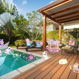 freetoedit cute ham pool