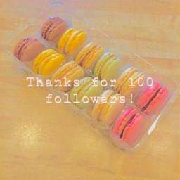 100followers 100follows 100 onehundredfollowers onehundred thankyou iloveyou ily ilysmmmmmmmmmmmmmmm ilysm thankyousomuch youarepogchamp