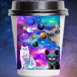 galaxycat freetoedit ircdesignthecup designthecup