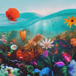 underwater ocean oceanlife surrealart wonder flowers climatechange colorful