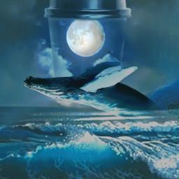 freetoedit howifeelwhenidrinkcoffee moon whale fantasy cup ocean landscape ircdesignthecup designthecup