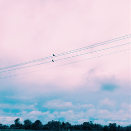 freetoedit clouds cloudysky pinkish blue rainyday sky summer photography birds