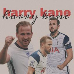 harrykane harry kane football england englandfootball harrykanefootball footballers freetoedit