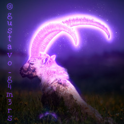 animal neon horns glow field night goat freetoedit