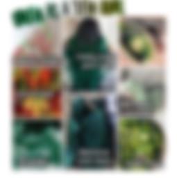 _firevibes12 green nichememe picsart