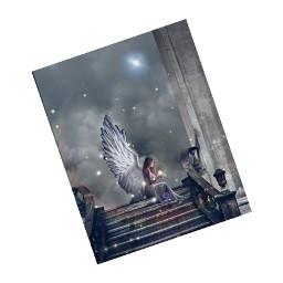anglewings wings freetoedit