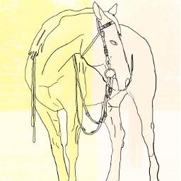 freetoedit chestnut horse longprocess
