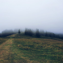 mountains freetoedit fog